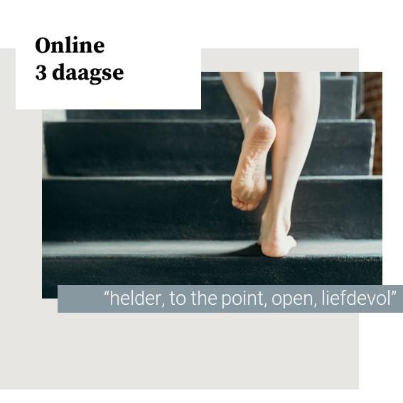 Diepgaande online 3 daagse